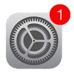 iOS-931
